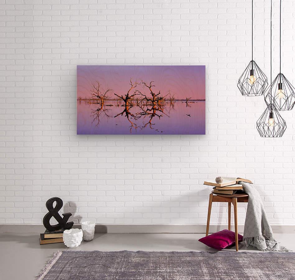 Twin Reflections - Pamamaroo Lake  Wood print