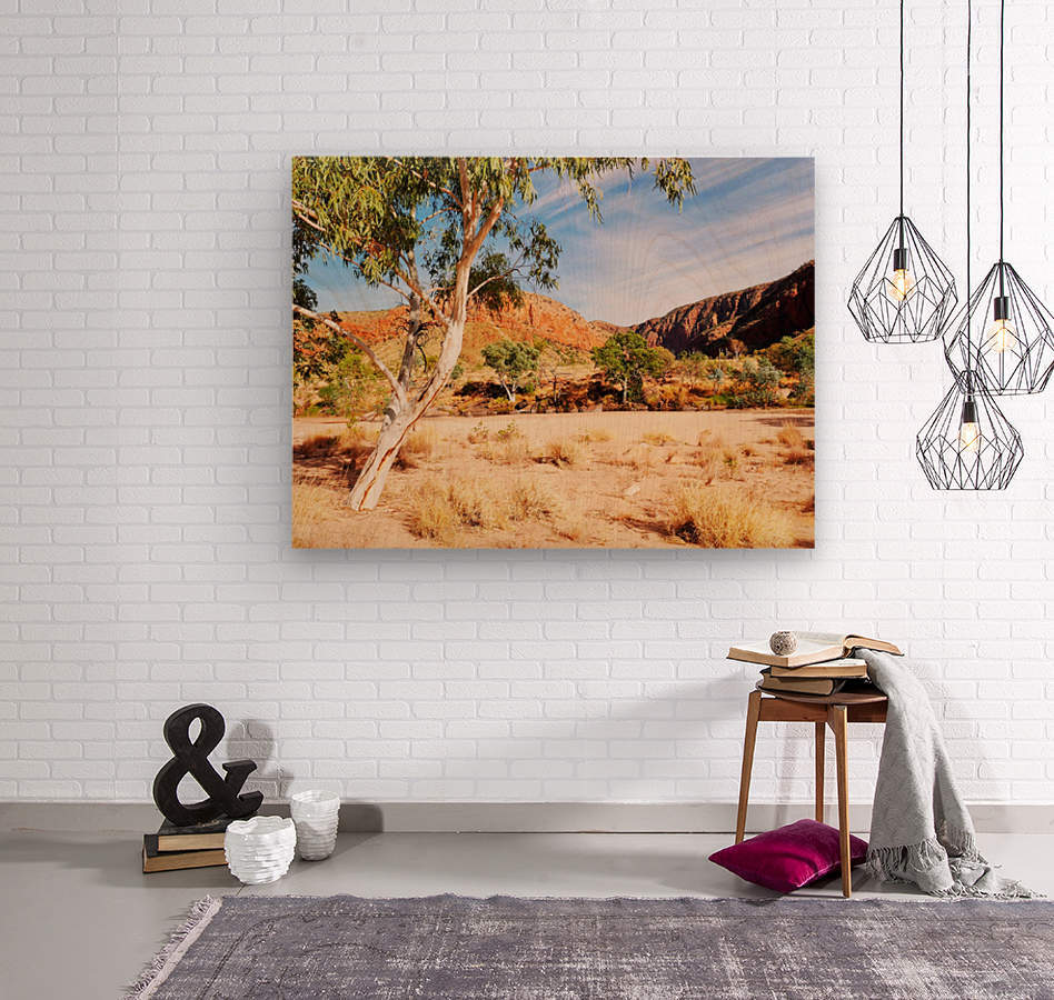 Ghost Gum  - Central Australia 3  Wood print