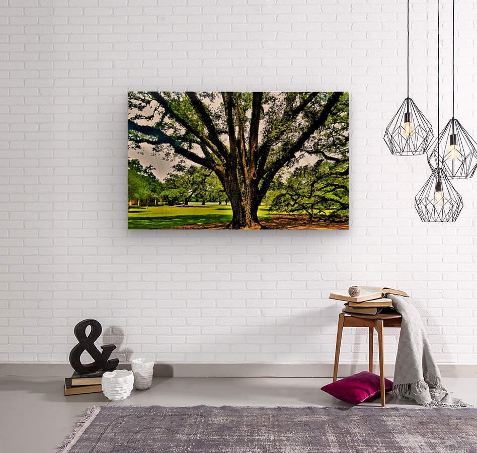 Big  Wood print