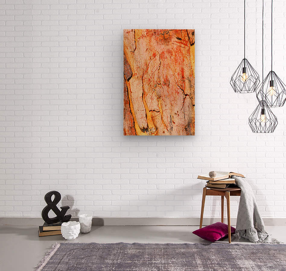 Eucalyptus Bark And Patterns  Wood print