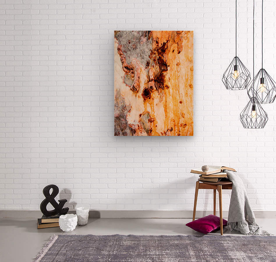 Ghost Gum Bark - 4  Wood print