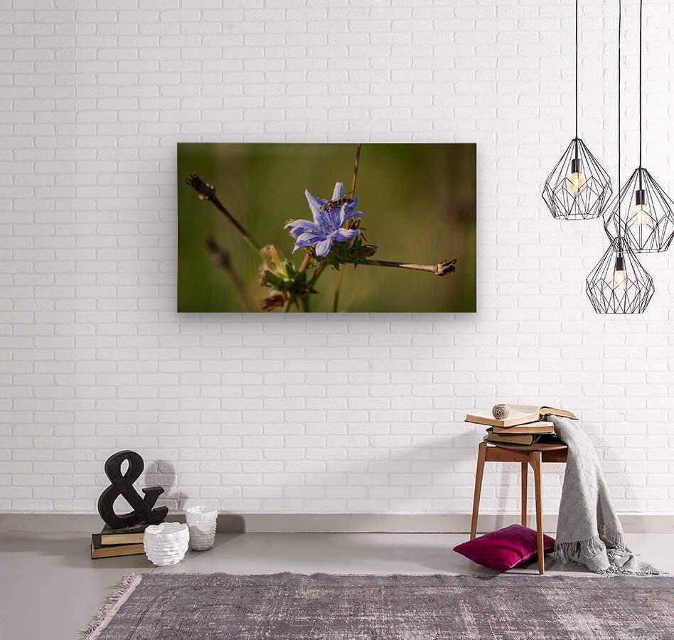 Flowers_  Wood print