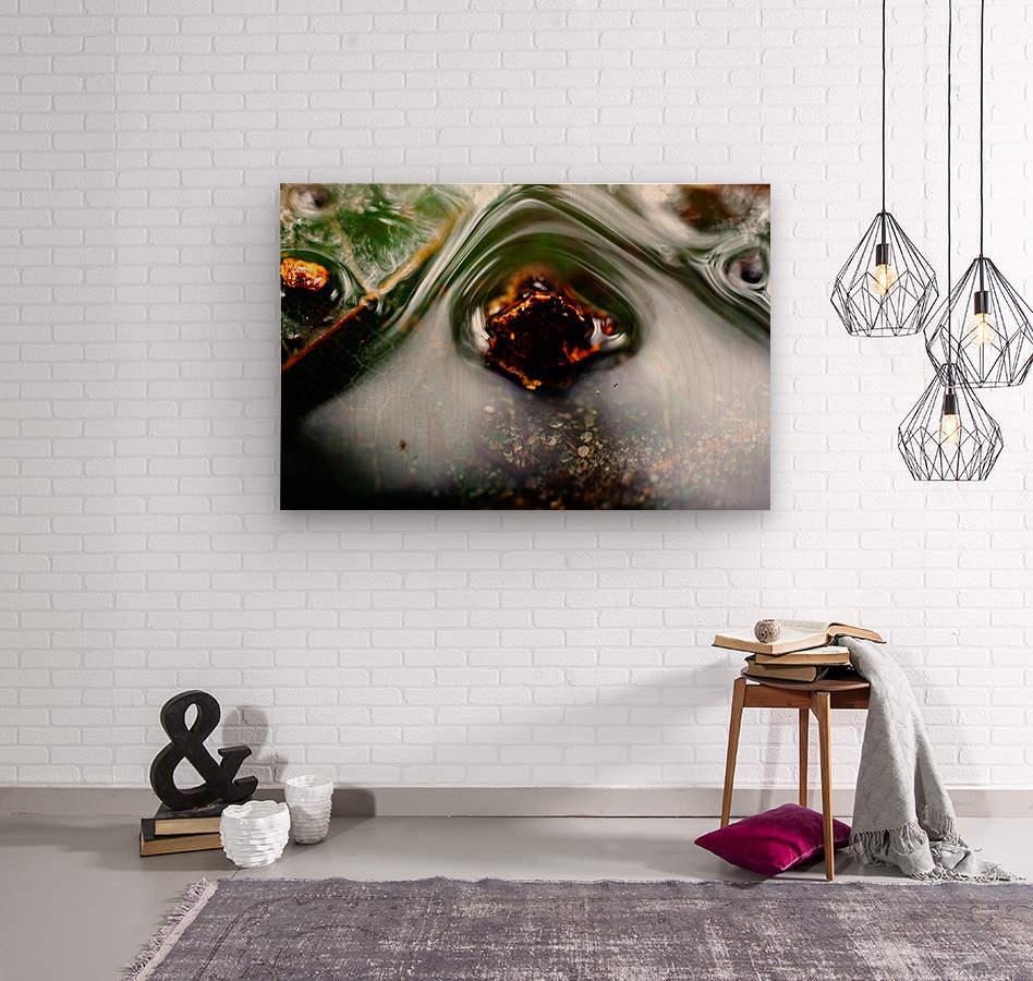 Macro Raindrop Photography Art 45  Wood print