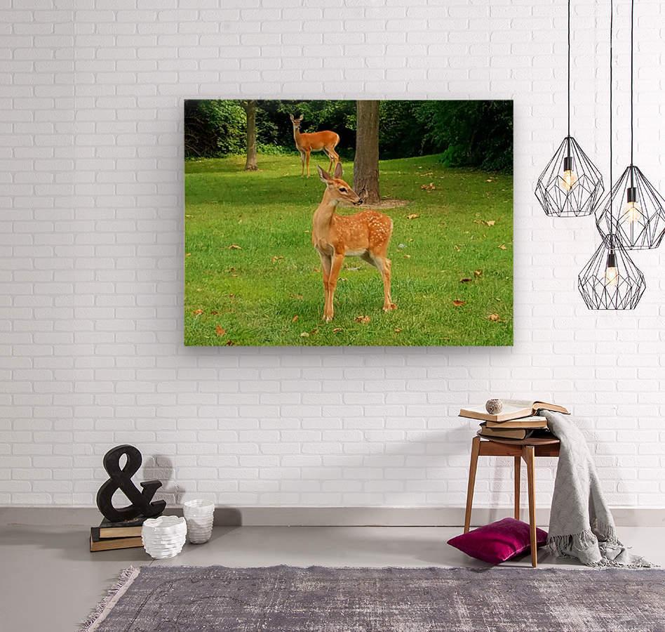 20190909_153647  Wood print
