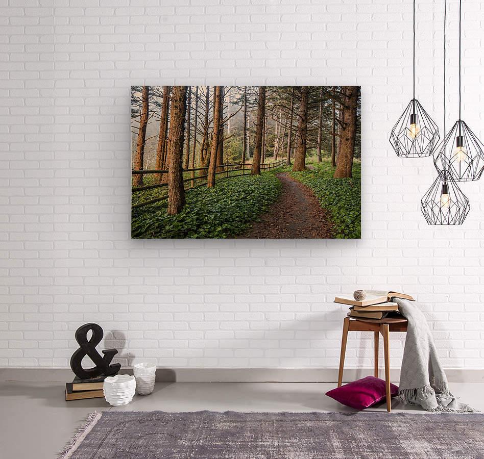memory lane  Wood print