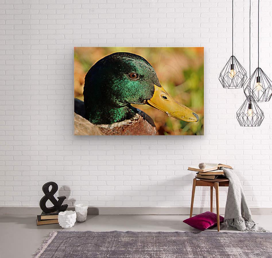 20190909_151825  Wood print