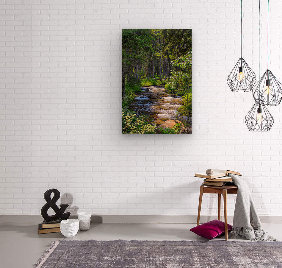 Fairy Creek  Wood print