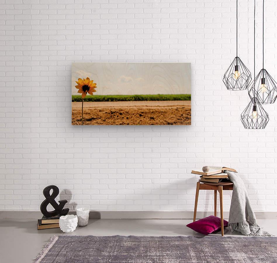 IMG_20180712_114734_227  Wood print