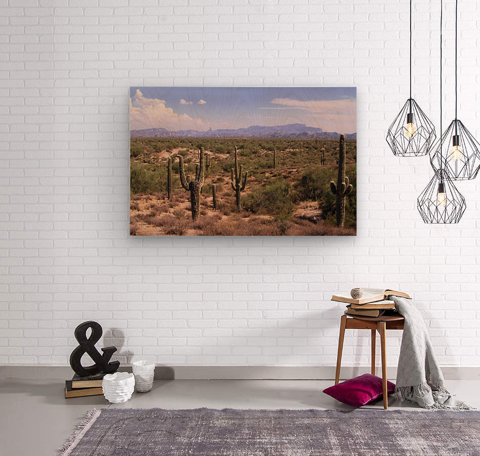 Sonora Desert Landscape Arizona Photograph  Wood print