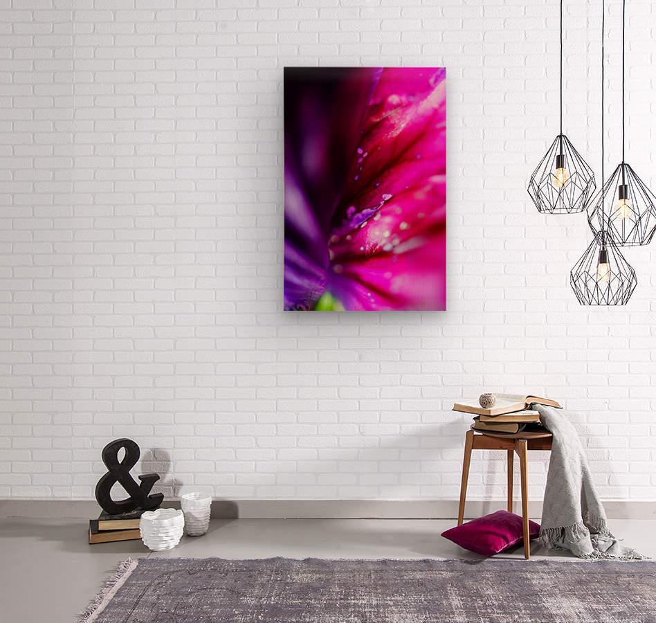In between colorful flowers  Wood print