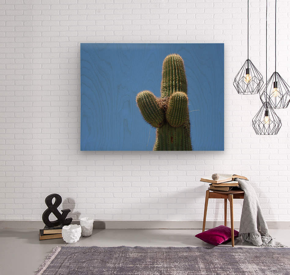 Saguaro Cactus Cradling A Birds Nest Photography  Wood print