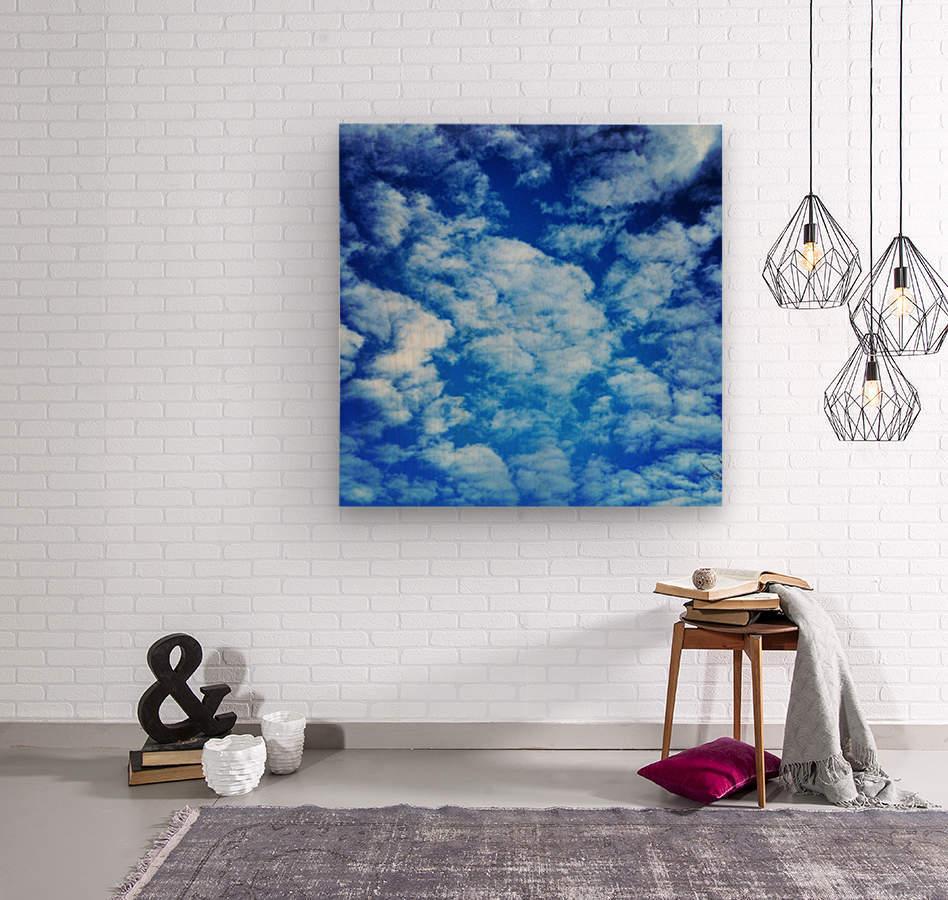 48789057208_143339dbb6_o  Wood print