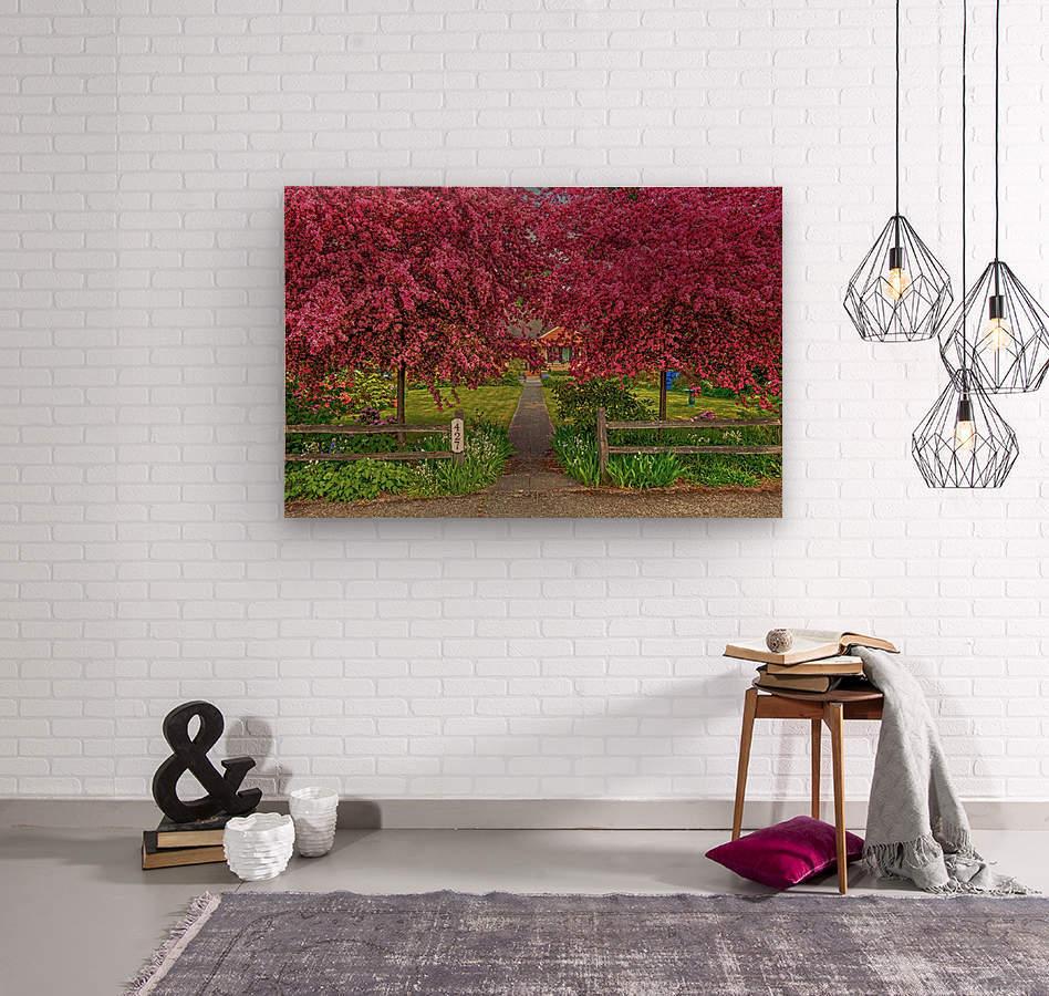 pinkdream1  Wood print