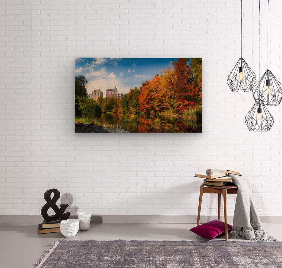 Fall colors in NY  Wood print