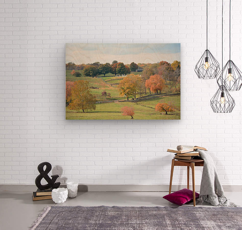 Fall Foliage In Virginia Photograph  Wood print