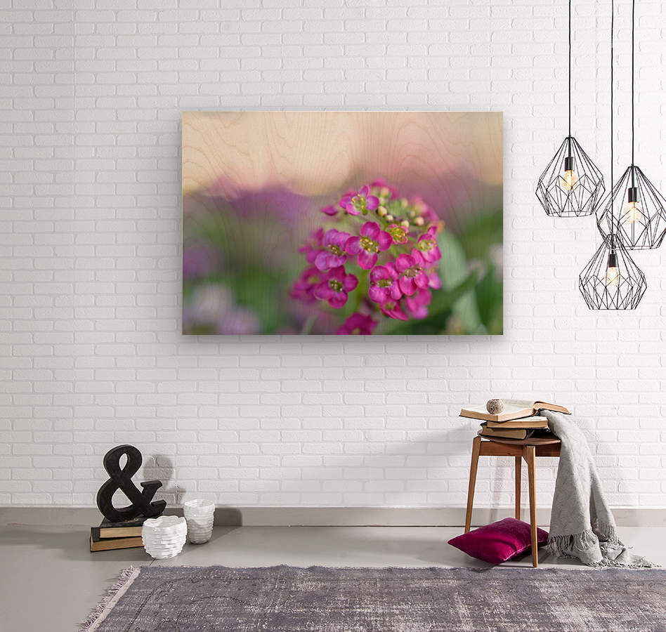 Pink Flowers Soft Photography  Wood print