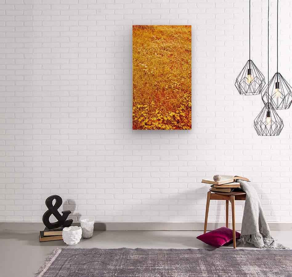 IMG_20190915_090139849 3072x5461~2  Wood print