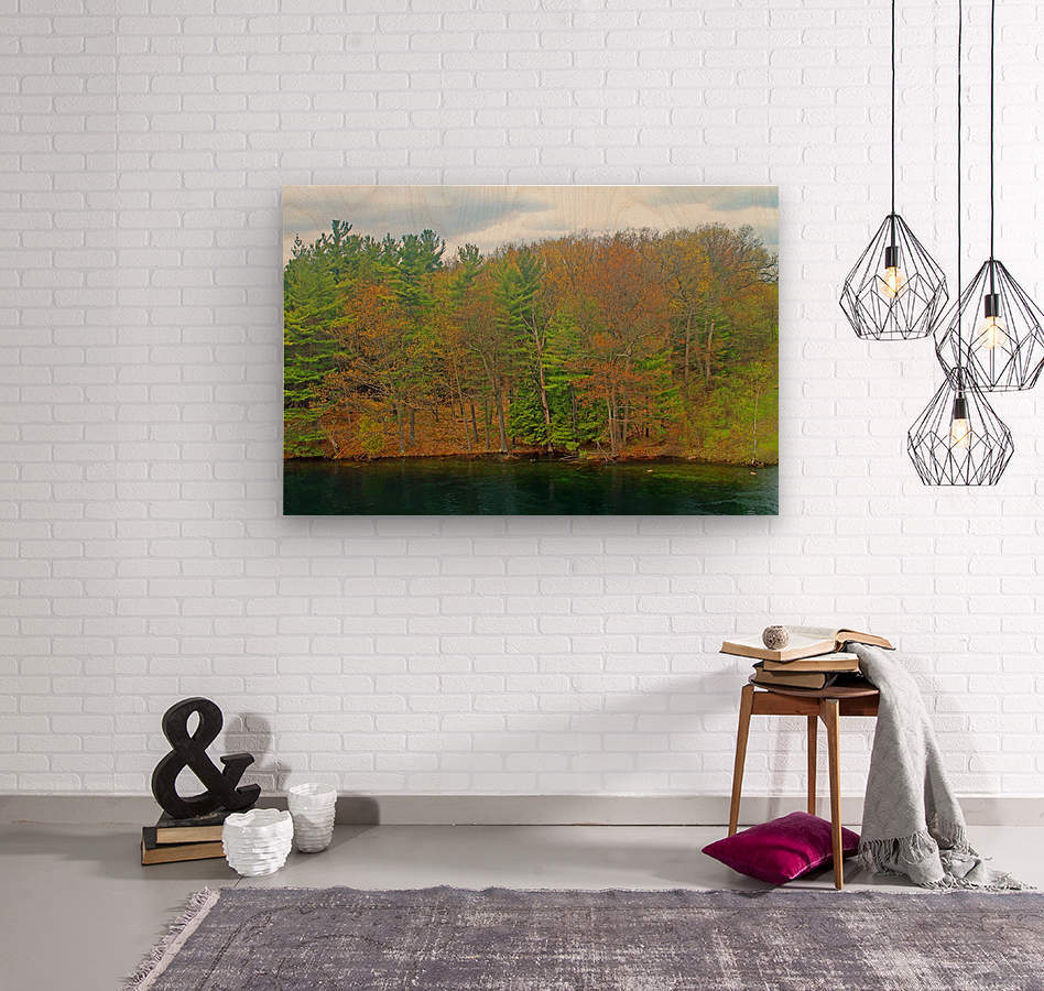 Lively Trees  Wood print
