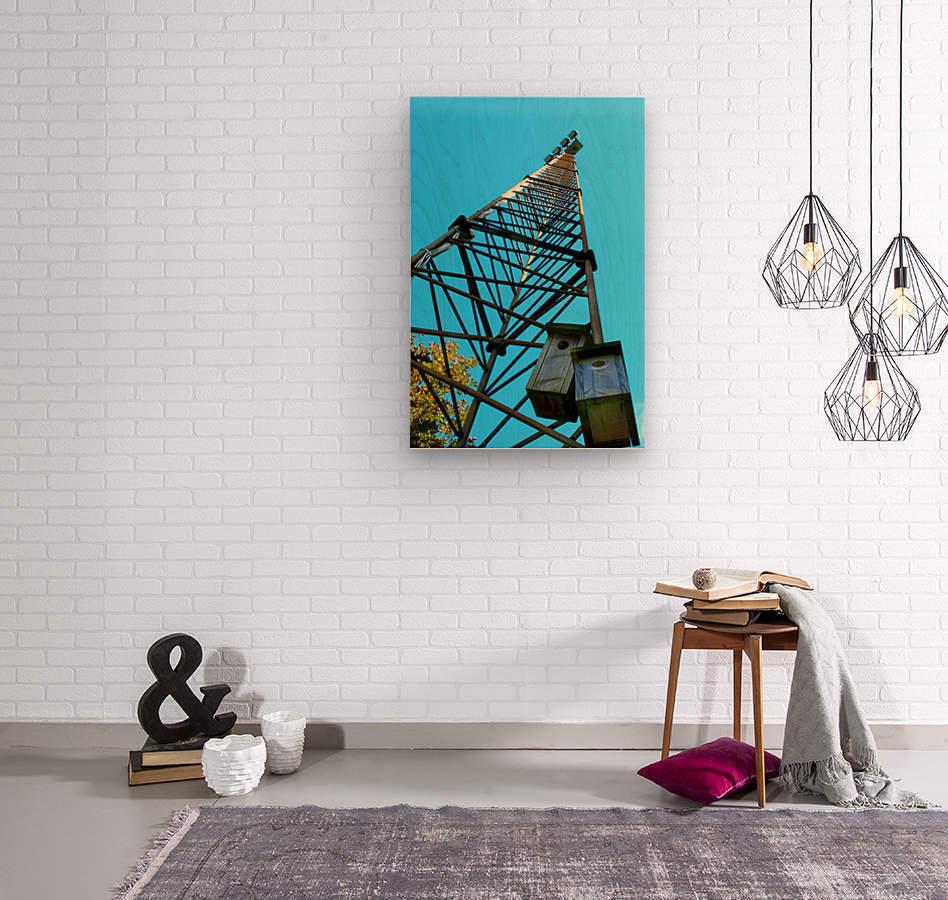 7856499  Wood print