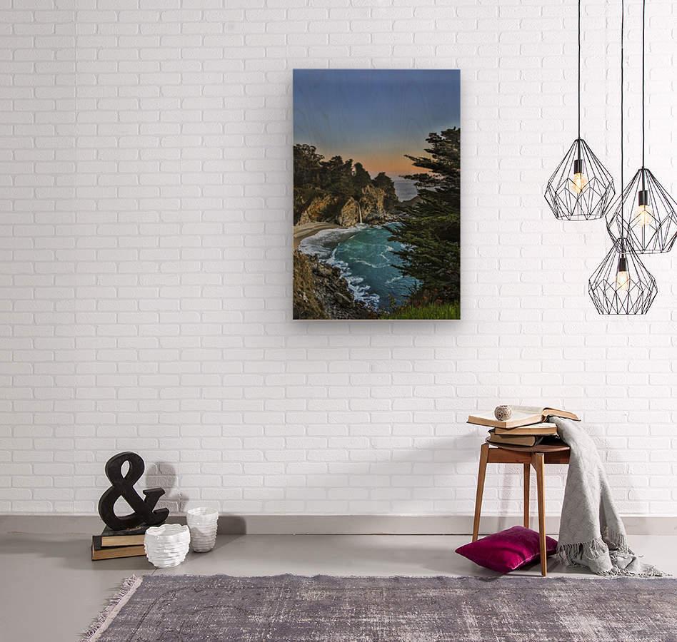 Para-Paradise  Wood print