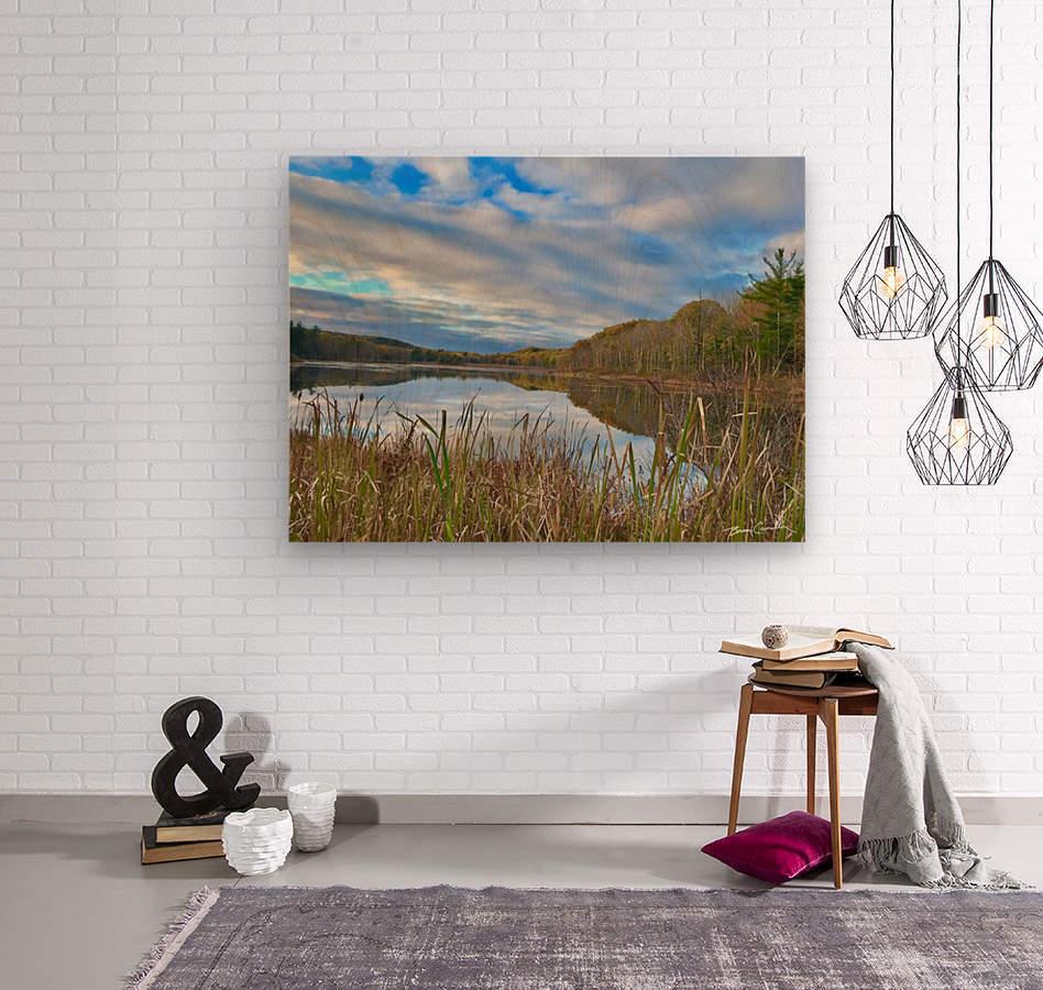 Granville Pond  Wood print