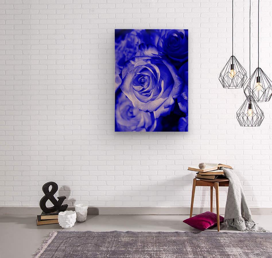 Rose blue  Wood print