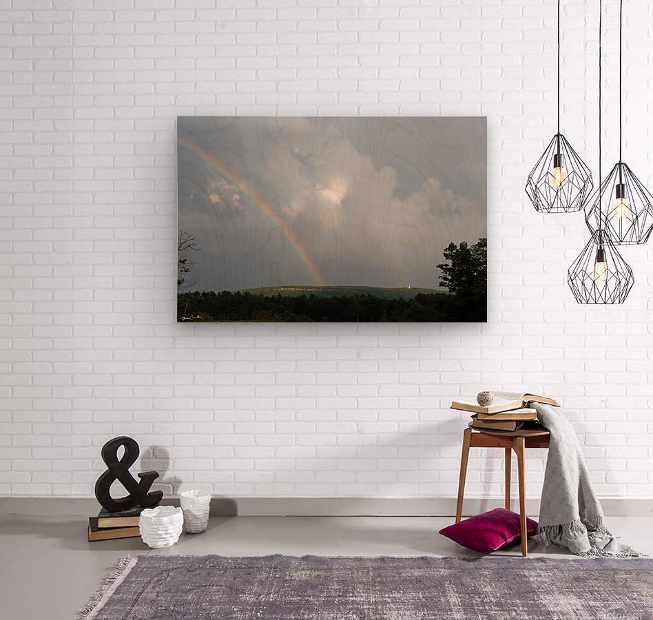 Rainbow Ridge  Wood print