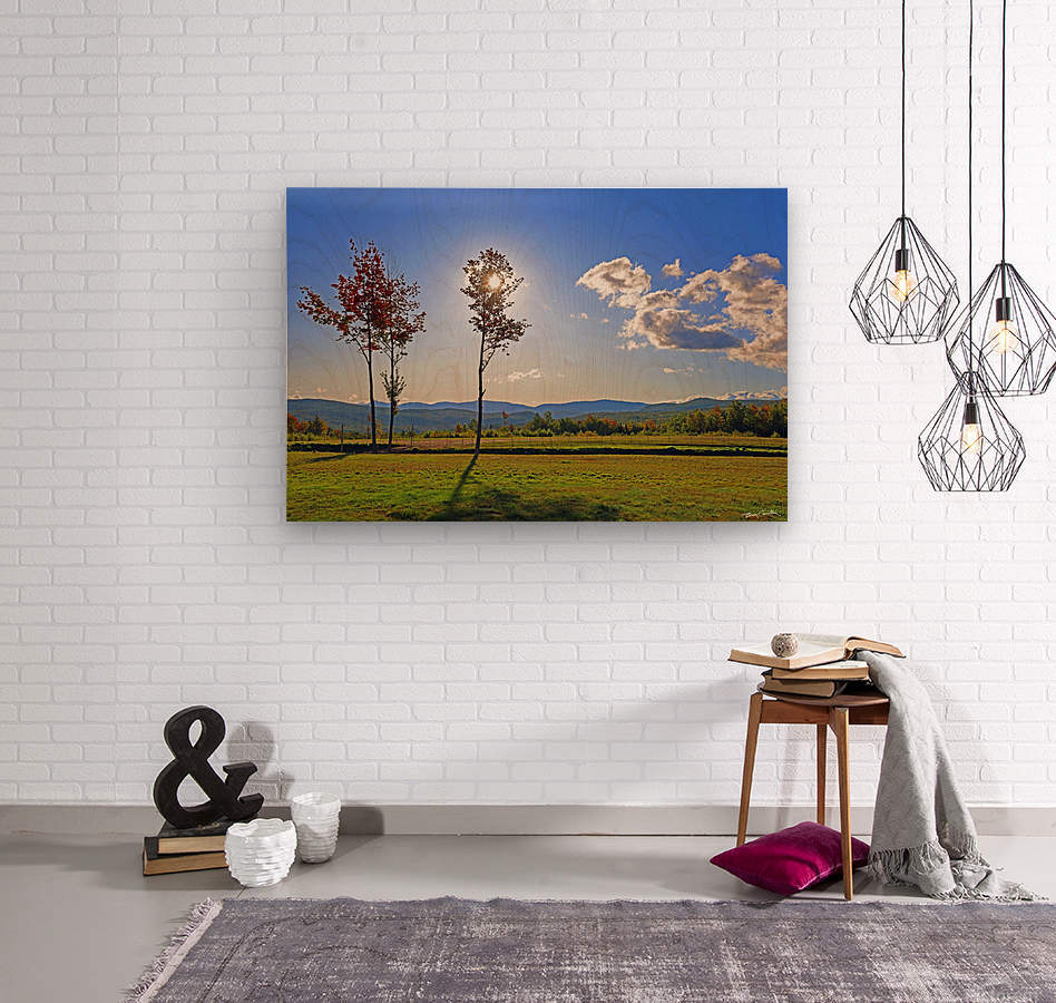 Jericho Meadow  Wood print