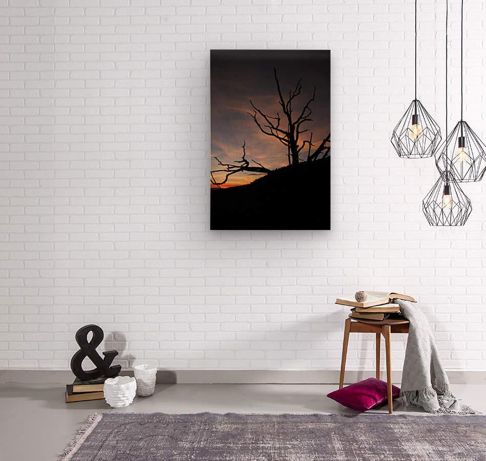 New Mexico Sunrise  Wood print
