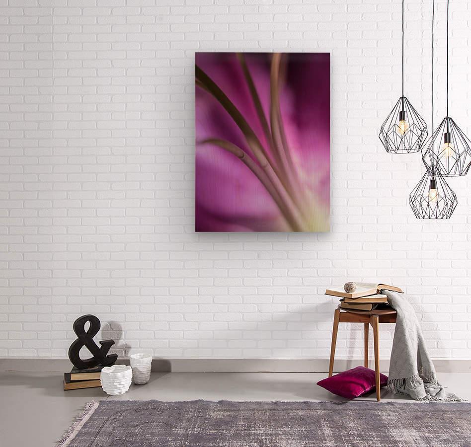 Pinky 5  Wood print