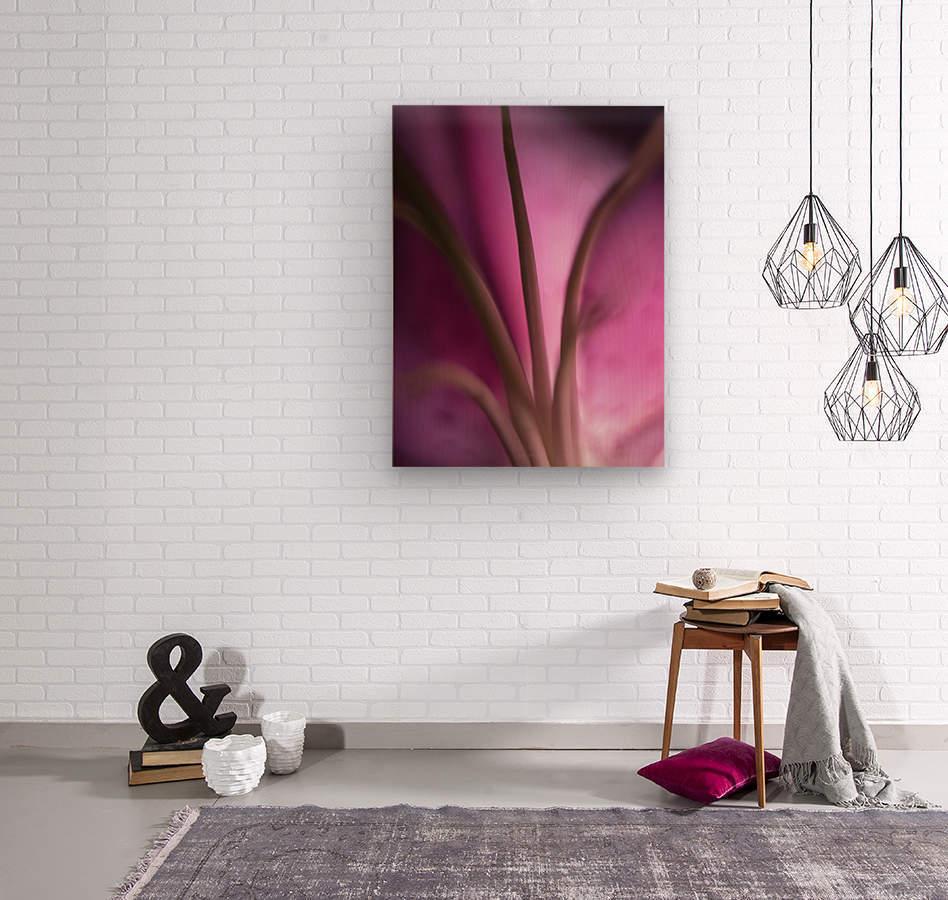 Pinky 4  Wood print