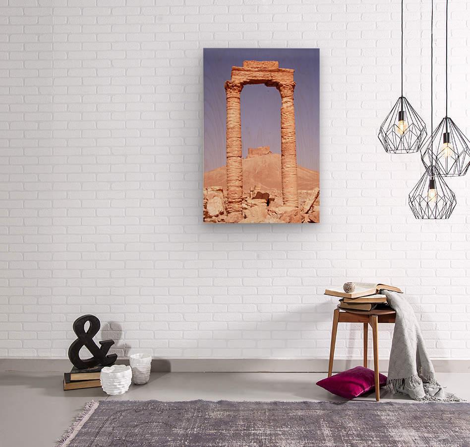 Palmyra  Wood print
