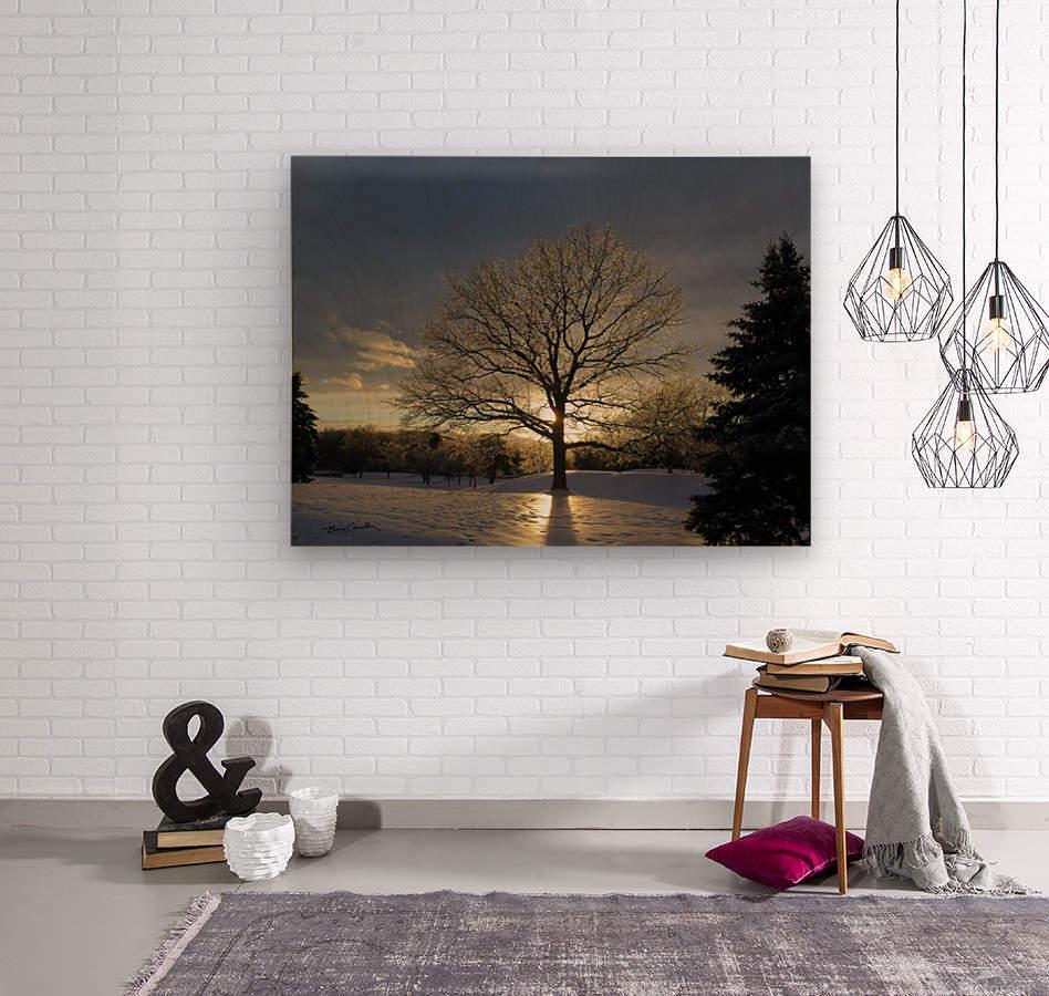Winter Oak  Wood print