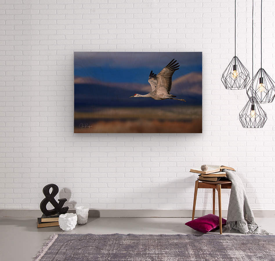 Crane over the Bosque  Wood print
