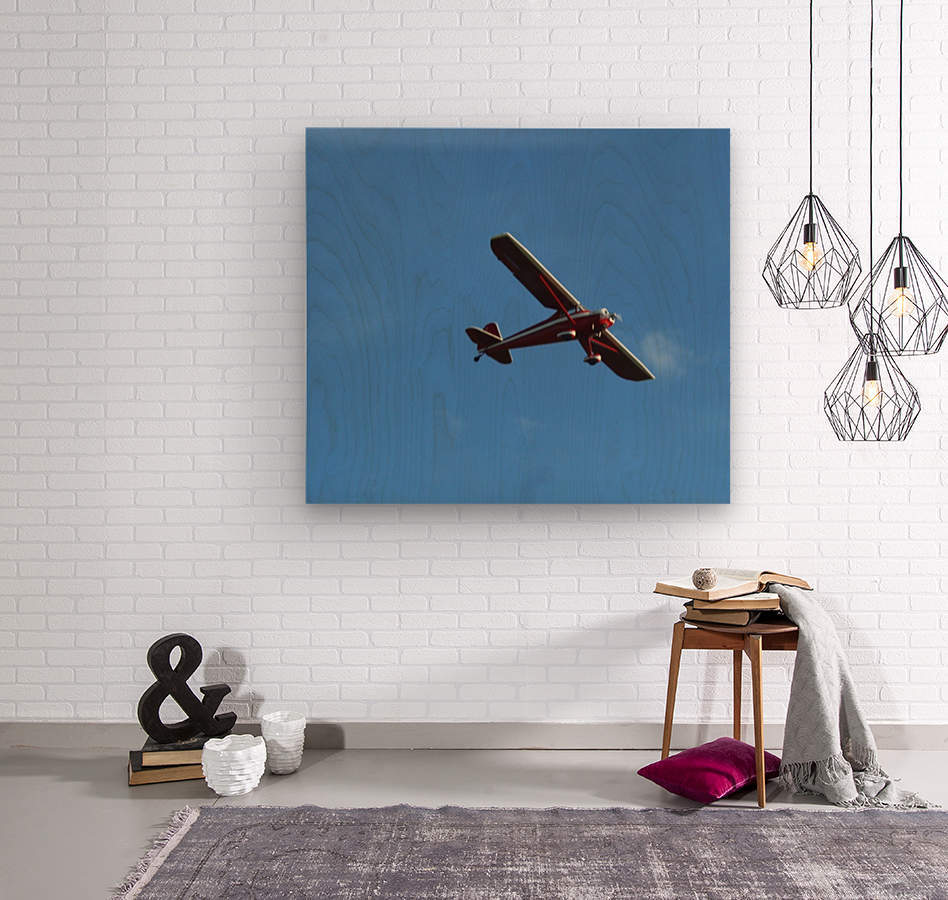 Flyover the  Prairie  Wood print