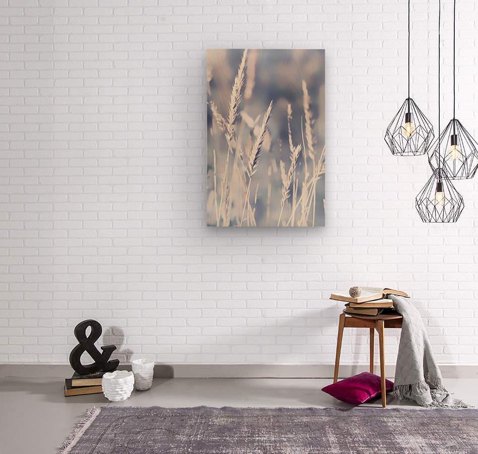 Spica  Wood print