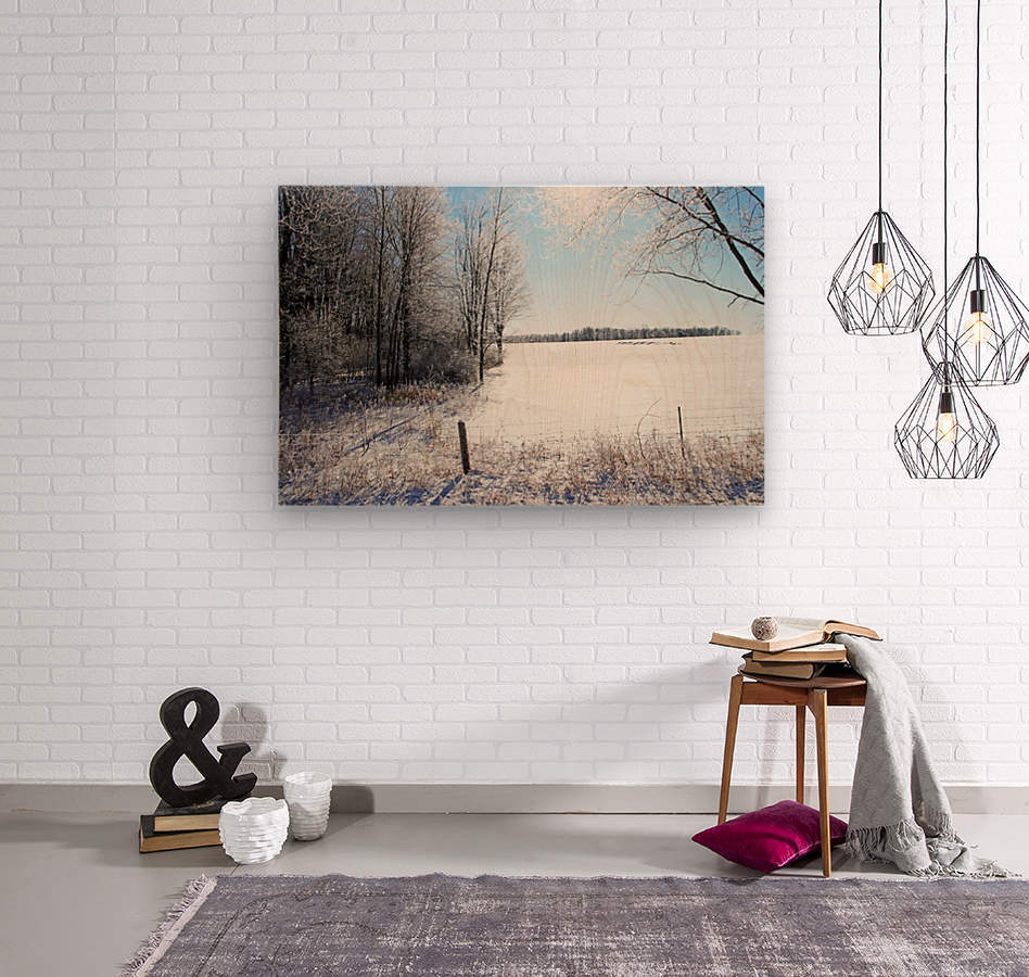 Frosty Winter Countryside I  Wood print