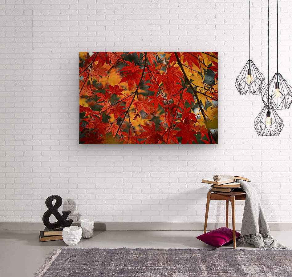 Fall Foliage Photography   Wood print