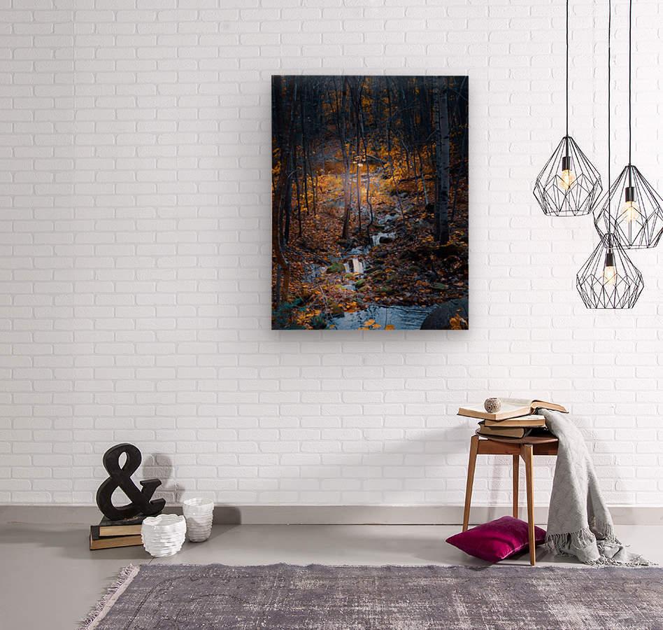 Ruisseau  Wood print