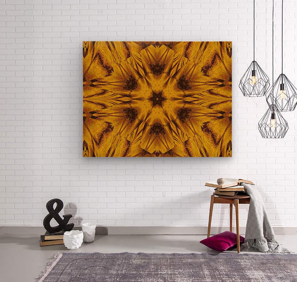 Spiritual Sunshine  42  Wood print