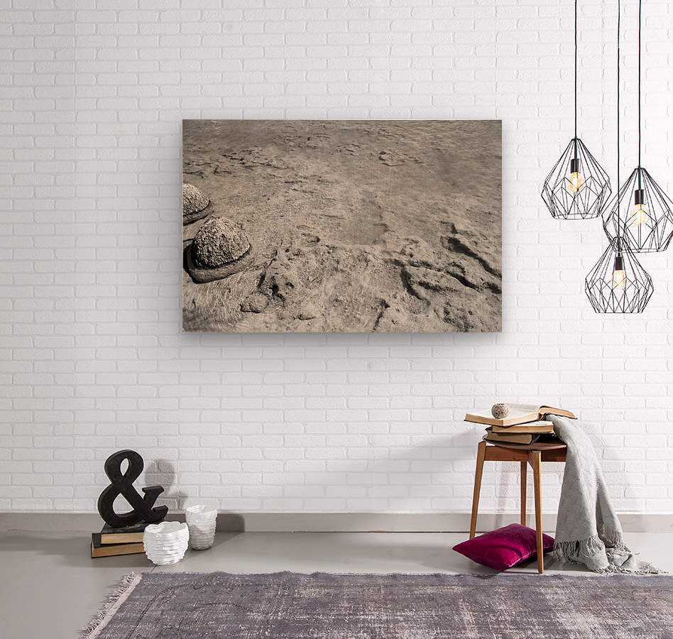 Crystal Clear B&W  Wood print