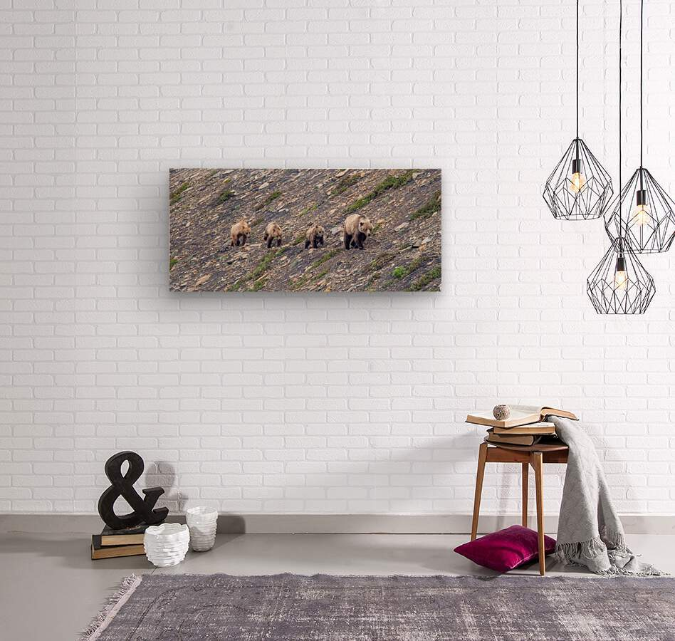 Grizzly Bear Family - Walk this way.  Wood print