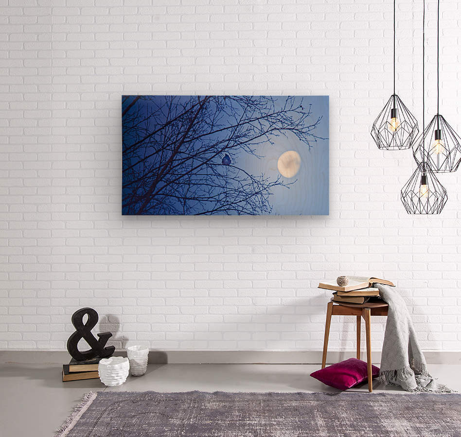 Soleil levant  Wood print
