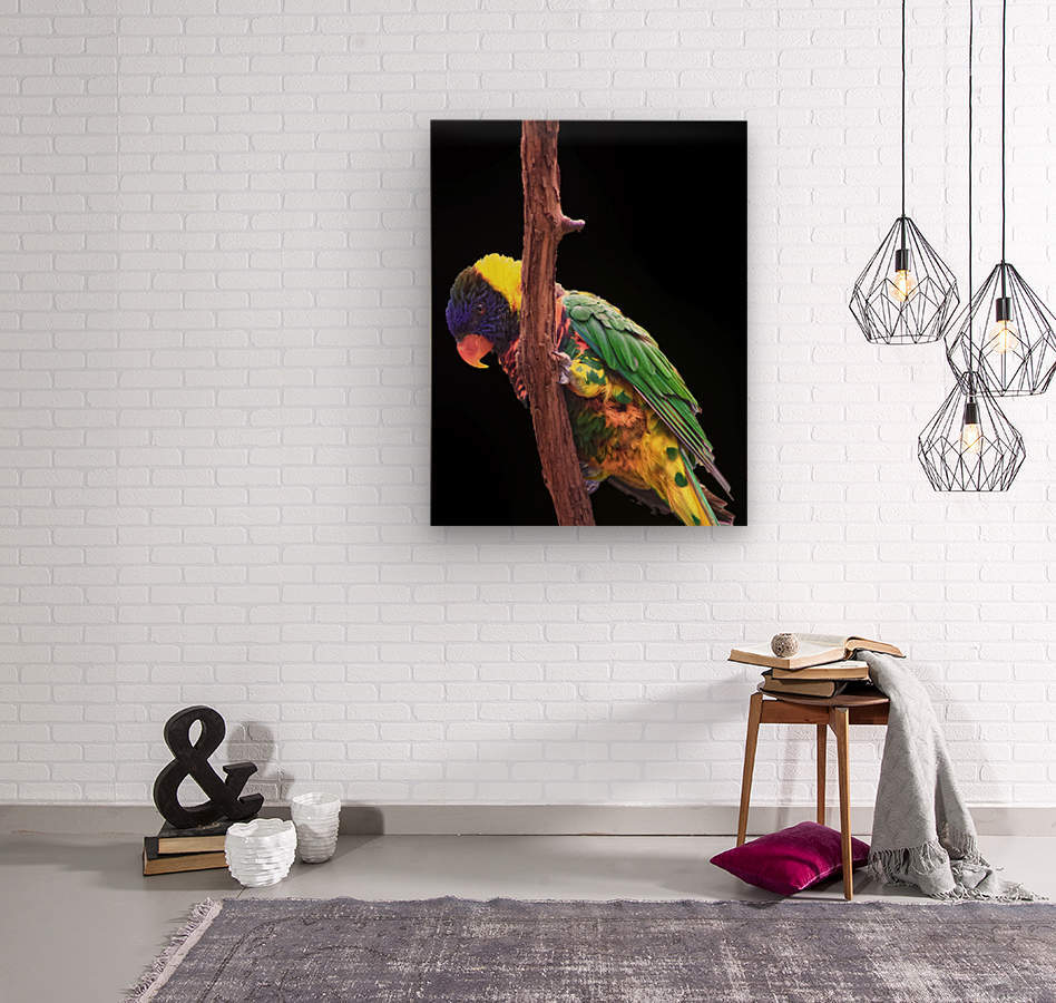 Colorful Bird on branch  Wood print
