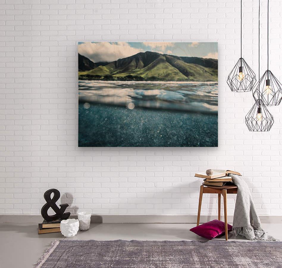 Land and Sea  Wood print
