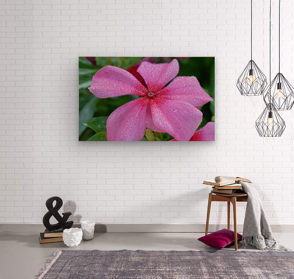 Floral Photograph   Wood print
