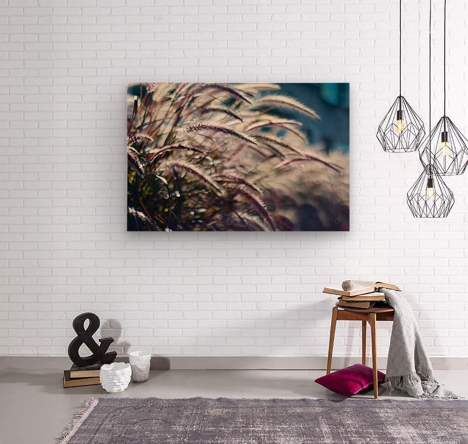 Plants  Wood print