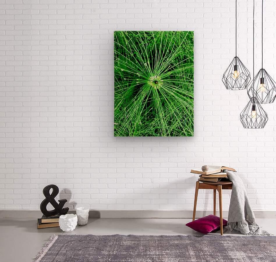 BOTANICA  Wood print