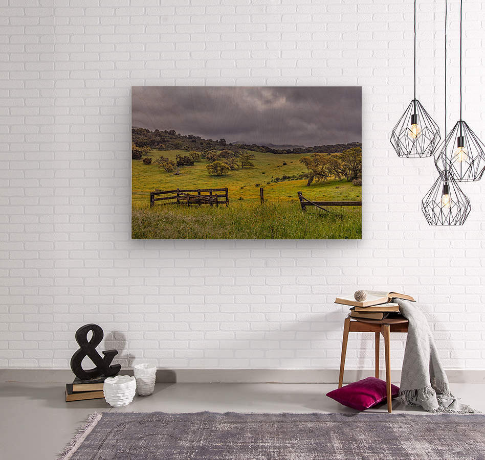 Neverland  Wood print