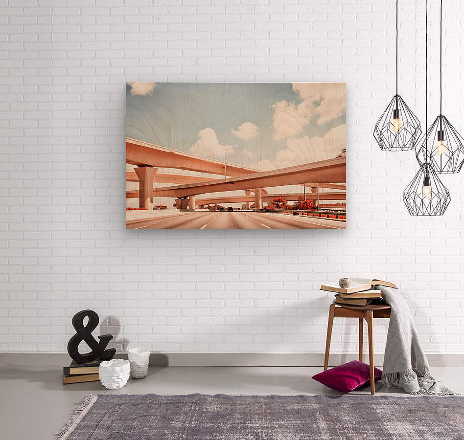 Dolphin Expressway 002  Wood print